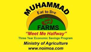 Nation Farm3